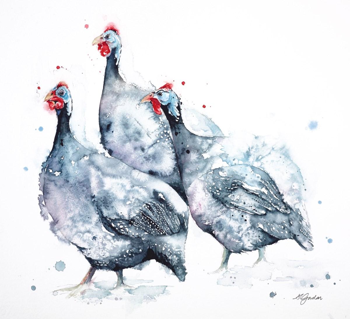 A Trio of Guinea Fowl